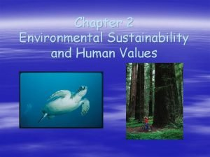Chapter 2 Environmental Sustainability and Human Values Sustainability