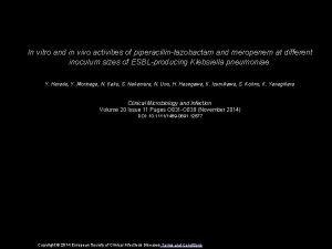 In vitro and in vivo activities of piperacillintazobactam