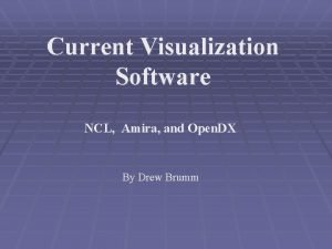 Current Visualization Software NCL Amira and Open DX