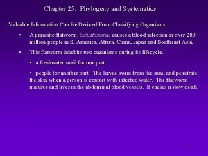 Chapter 25 Phylogeny and Systematics Valuable Information Can
