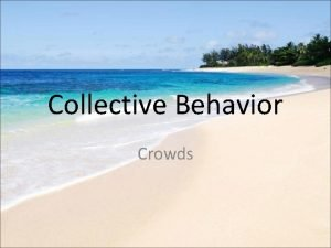 Collective Behavior Crowds Collective Behavior What is collective