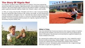 The Story Of Nigxia Red For centuries residents