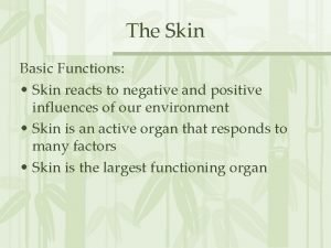 The Skin Basic Functions Skin reacts to negative