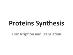 Proteins Synthesis Transcription and Translation Protein Synthesis An