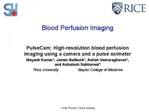 Blood Perfusion Imaging Pulse Cam Highresolution blood perfusion