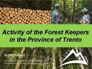 Activity of the Forest Keepers in the Province