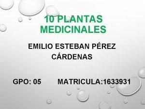 10 PLANTAS MEDICINALES EMILIO ESTEBAN PREZ CRDENAS GPO