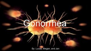 Gonorrhea By Lucas Megan and Jan History Gonorrhea