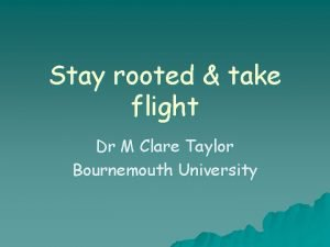 Stay rooted take flight Dr M Clare Taylor