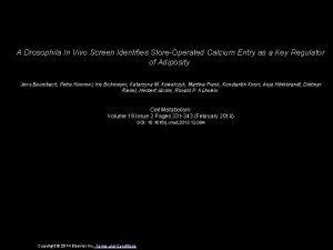 A Drosophila In Vivo Screen Identifies StoreOperated Calcium