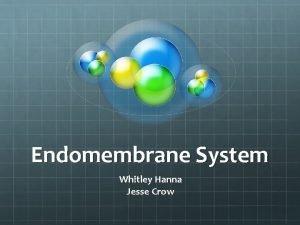 Endomembrane System Whitley Hanna Jesse Crow Endomembrane System