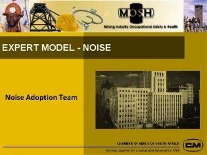 EXPERT MODEL NOISE Noise Adoption Team CHAMBER OF