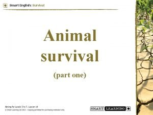 Smart English Survival Animal survival part one Aiming