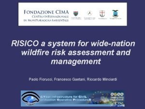 RISICO a system for widenation wildfire risk assessment
