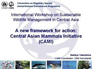 Convention on Migratory Species United Nations Environment Programme
