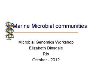 Marine Microbial communities Microbial Genomics Workshop Elizabeth Dinsdale