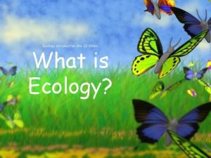 Ecology introduction Me 23 slides What is Ecology