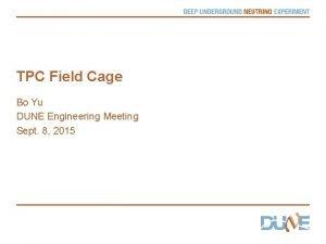 TPC Field Cage Bo Yu DUNE Engineering Meeting