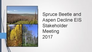 Spruce Beetle and Aspen Decline EIS Stakeholder Meeting