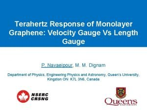 Terahertz Response of Monolayer Graphene Velocity Gauge Vs