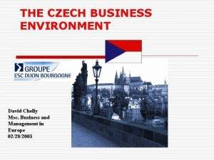 THE CZECH BUSINESS ENVIRONMENT David Chelly Msc Business