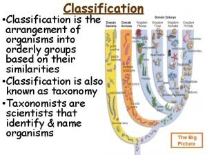Classification Classification is the arrangement of organisms into