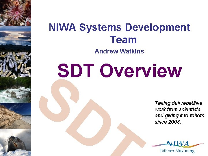 NIWA Systems Development Team Andrew Watkins SD T