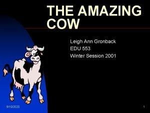 THE AMAZING COW Leigh Ann Gronback EDU 553