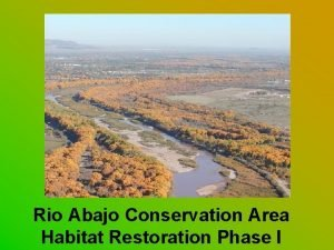 Rio Abajo Conservation Area Habitat Restoration Phase I