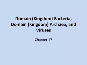 Domain Kingdom Bacteria Domain Kingdom Archaea and Viruses
