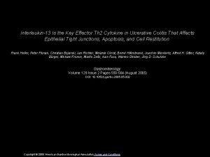 Interleukin13 Is the Key Effector Th 2 Cytokine