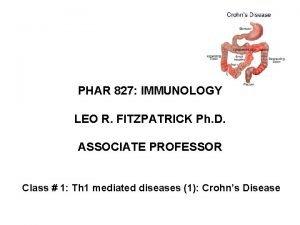 PHAR 827 IMMUNOLOGY LEO R FITZPATRICK Ph D