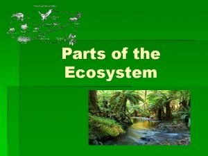 Parts of the Ecosystem ECOSYSTEMS An ECOSYSTEM must