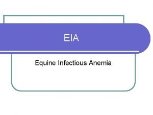 EIA Equine Infectious Anemia What is EIA Equine