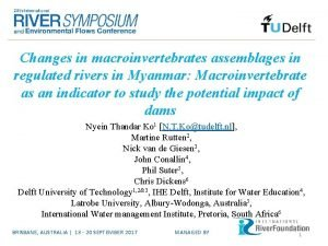 Changes in macroinvertebrates assemblages in regulated rivers in
