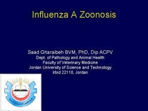 Influenza A Zoonosis Saad Gharaibeh BVM Ph D