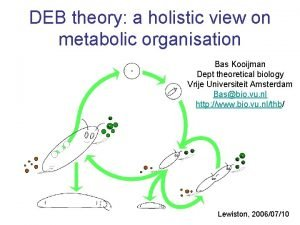 DEB theory a holistic view on metabolic organisation