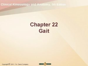 Clinical Kinesiology and Anatomy 5 th Edition Chapter