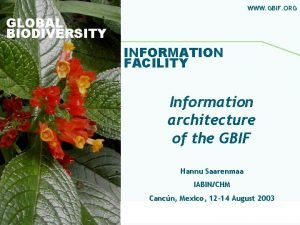 WWW GBIF ORG GLOBAL BIODIVERSITY INFORMATION FACILITY Information