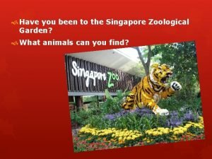 Have you been to the Singapore Zoological Garden