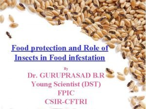 Food of protection and Role of Role Botanicals