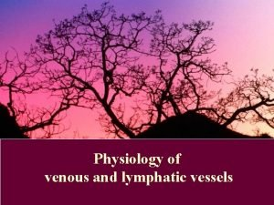 Physiology of venous and lymphatic vessels Microcirculation The