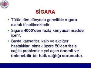 SGARA Ttn tm dnyada genellikle sigara olarak tketilmektedir