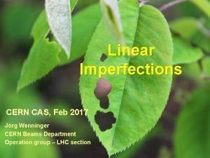 Linear Imperfections CERN CAS Feb 2017 Jrg Wenninger