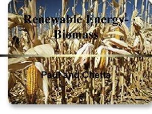 Renewable Energy Biomass Paul and Chetta Biomass The