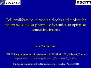 Cell proliferation circadian clocks and molecular pharmacokineticspharmacodynamics to