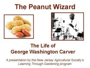 The Peanut Wizard The Life of George Washington