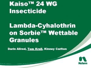 Kaiso 24 WG Insecticide LambdaCyhalothrin on Sorbie Wettable