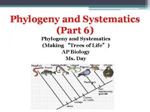 Phylogeny and Systematics Part 6 Phylogeny and Systematics