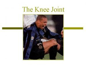 The Knee Joint The Knee Joint p p